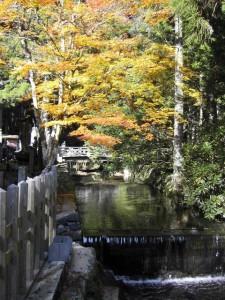 奥の院の川